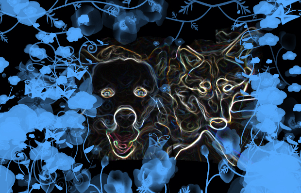 Image: art image that outlines 2 dogs/wolves. Links to posts about dogs and other canines, particularly camp dogs
