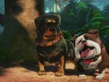 Scene from Disney movie up:  alpha and beta in the woods