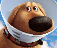 Scene from Disney movie Up: Dug with cone of shame
