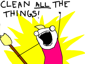 "Allie Brosh cartoon ""I clean ALL the things!"""