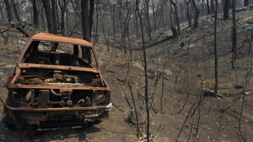 burned out car in forest landscape of ashes