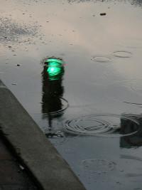 Benny Mazur rain puddles